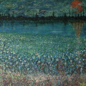 Irisvelden